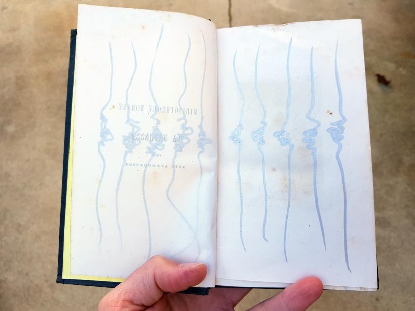 Eugénie, encre sur papier, 120 pages dessinées, 2011, image 3