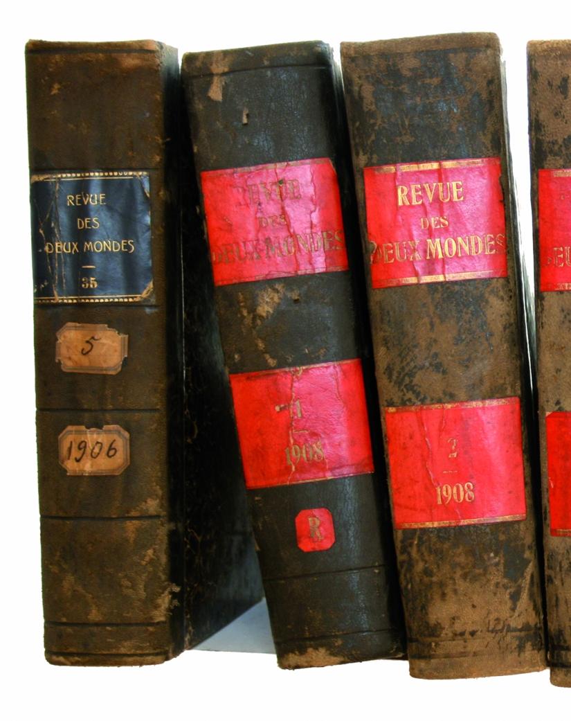 La revue des 2 mondes, 34 576 pages et 1 fétiche, détail 3, Installation, 36 volumes anciens et deux panneaux imprimés, collés sur toile, 2008