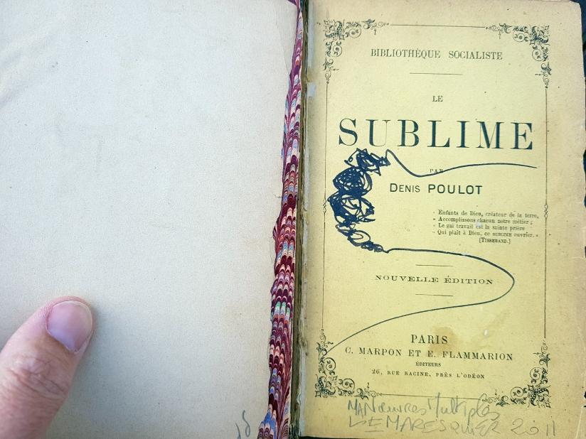 le sublime, encre et pastel à l'huile sur papier, 205 pages dessinées, 2011, image 7
