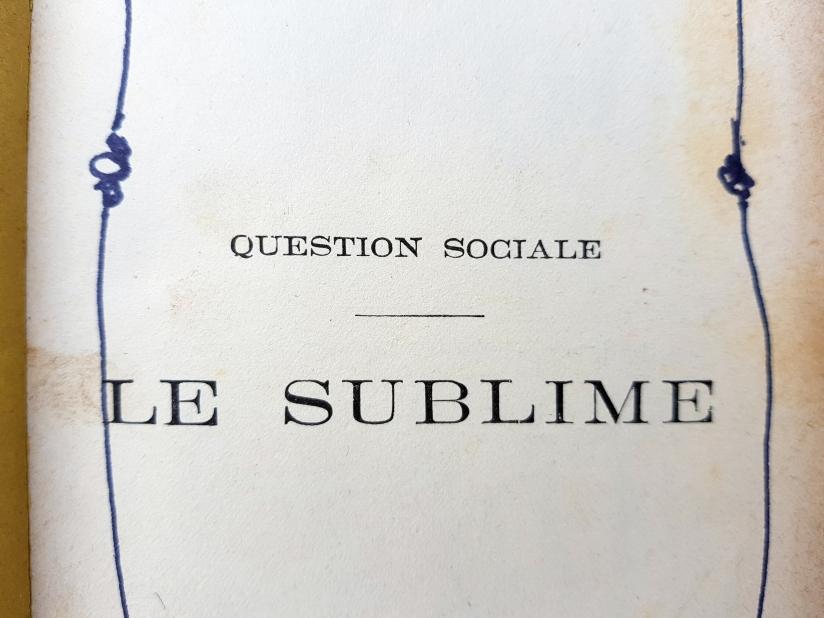 le sublime, encre et pastel à l'huile sur papier, 205 pages dessinées, 2011, image 8