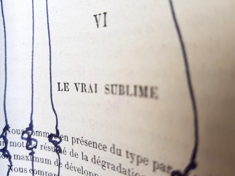 le sublime, encre et pastel à l'huile sur papier, 205 pages dessinées, 2011, image 9