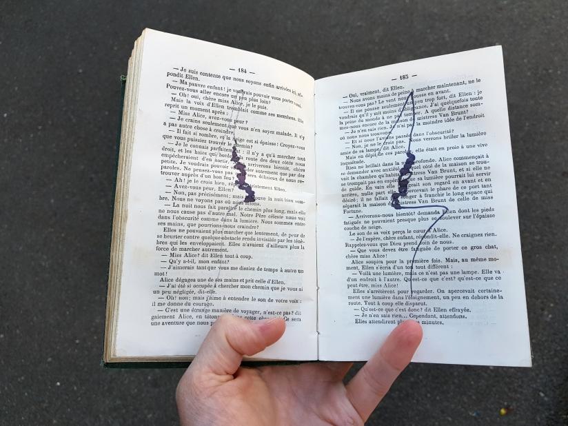 Le vaste monde, encre sur papier, 274 pages dessinées, 2011, image 4