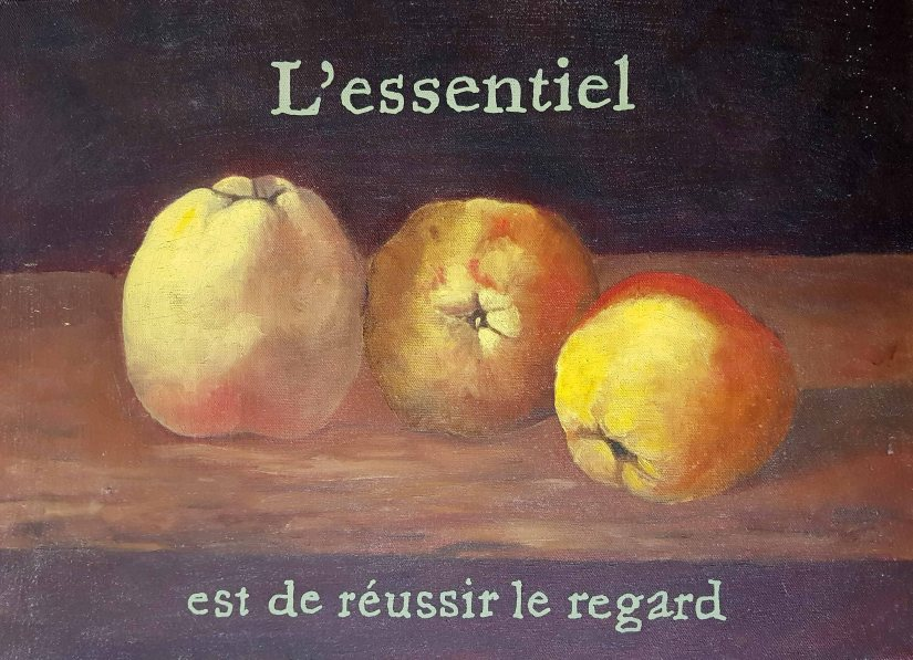 L'essentiel David Lemaresquier